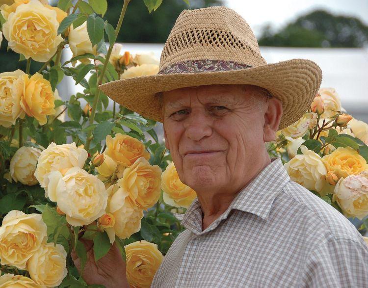 Wielki hodowca David Austin ze swoją różą Graham Thomas